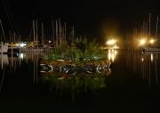 Petite-motte-Photo-nuit
